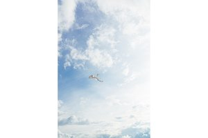 White kite flying against the blue