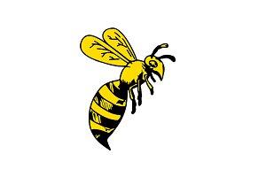 Yellowjacket Wasp Drawing