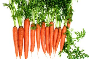 Raw Carrots with Stems