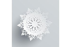 Snowflake Isolated on Silver