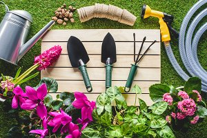 top view of gardening equipment and