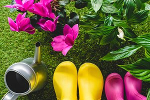 top view of colorful rubber boots, w