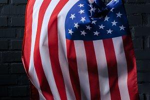 vertical waving united states flag i