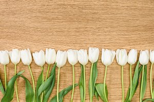 top view of white tulips on wooden t
