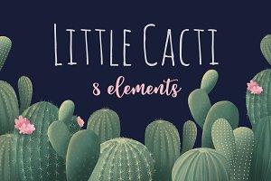 Green cactus. Succulents clip art