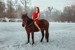 Beautiful woman sitting on horseback