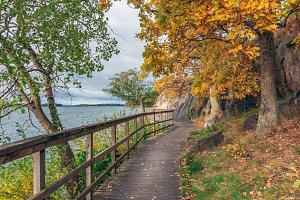 A wooden pathway along the lake.
