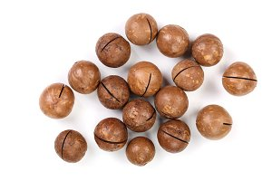 unshelled macadamia nuts isolated on