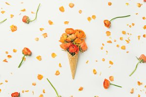 Waffle cone with orange buttercup