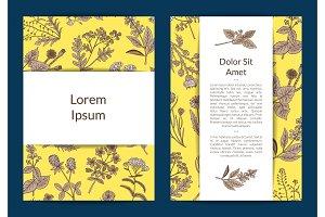 Vector hand drawn medical herbs card