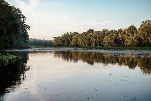 Florida Wekiva River Landscape