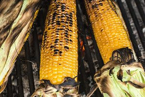 Roasted corn on the grill