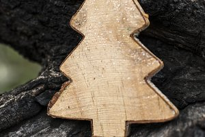 Christmas fir tree cut out