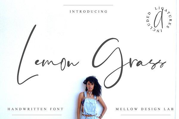 Script Fonts: Mellow Design Lab - Lemon Grass Script