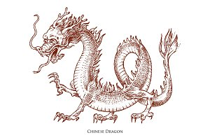 Chinese dragon. Mythological