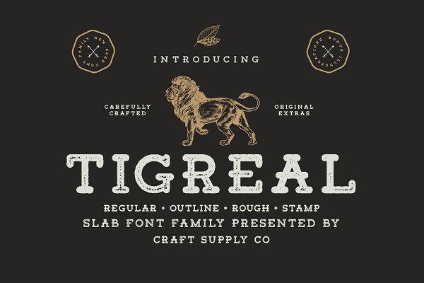 Slab Serif Fonts: Craft Supply Co. - Tigreal Font Family + Illustrations