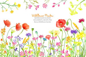 Watercolor Wild flower Meadow