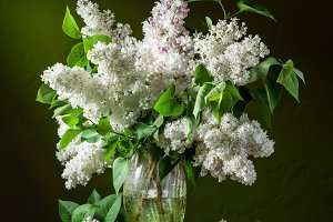 Lilac bouquet on the wooden table.
