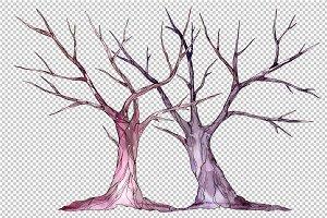 Wedding trees PNG watercolor set