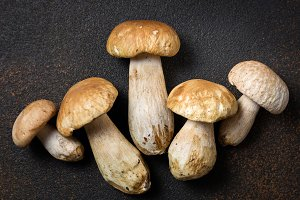 Mushroom Boletus on dark table
