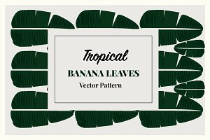 Tropical Banana Leaves Vector Patter