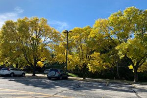 Fall is coming in Green Bay