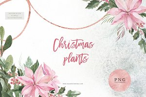 Watercolor Christmas Plants