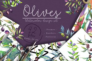 Branches of an olive tree PNG set