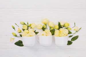 Flower bouquets with place for text