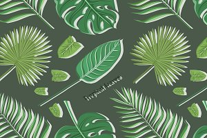 Vector tropical leaves set pattern