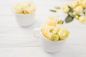 Cups with white flowers bouquets