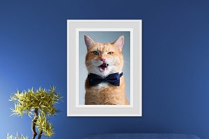 Wall Photo Mockups