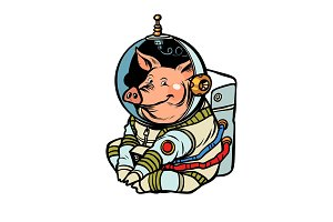 Pig astronaut character. Chinese new