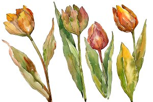 Colorful autumn tulips PNG set