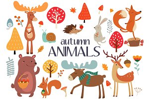 Collection of autumn wild animals.
