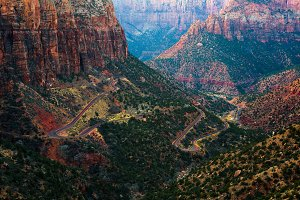 Road through the Zion National Park