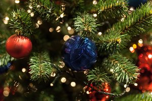 Close up of Christmas tree with orna