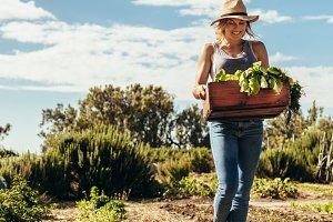 Female farmer with harvest box