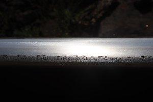 Sun lights Reflection on Steel Rail.