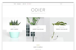 OdierLite - A WordPress Blog Theme