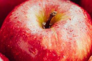 Harvest of ripe apples