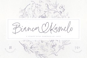 SALE | Bianca Kamelo Font