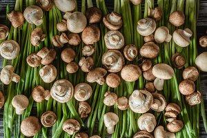 top view of champignon mushrooms on