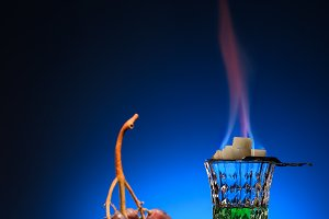 glass of flaming absinthe with sugar