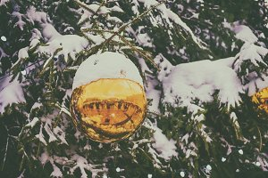 Christmas ball on a tree