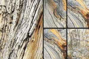 Wood Texture Bundle [High Res]