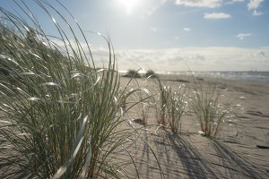 The sun over the sand dunes of the
