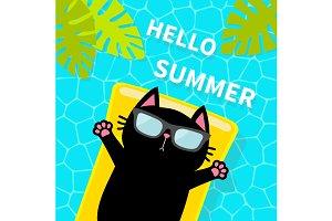 Swimming pool. Black cat on mattress