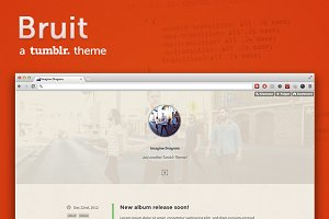 Bruit ~ a vintage tumblr theme