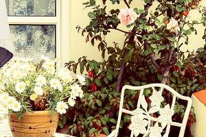 home table in summer garden